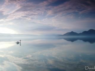 空と白鳥と洞爺湖
