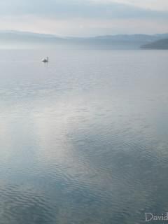 風と洞爺湖