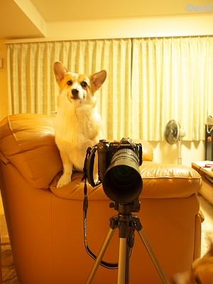 三脚で写真撮影