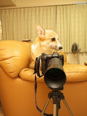 カメラの準備はOK