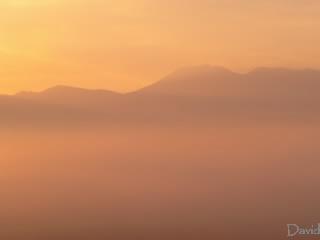 朝霧を染める朝陽