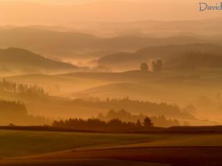 朝霧の美瑛