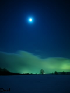 -14度の月明かり