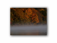 湖畔の秋の壁紙