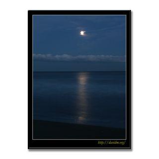 月夜のイタンキ