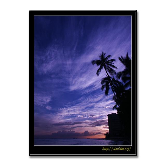 ハワイ夕景とヤシの木