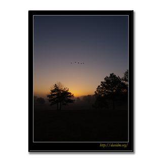 アメリカ合衆国ケンタッキー州 ある朝の風景