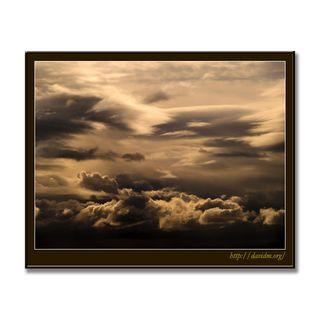 雲のキャンバスを飛ぶカモメ
