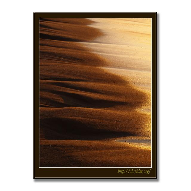 朝陽に照らされる波打ち際