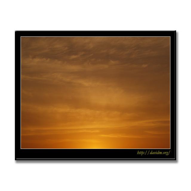 夕陽の柔らかな光