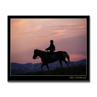 札内高原で夕暮れの乗馬