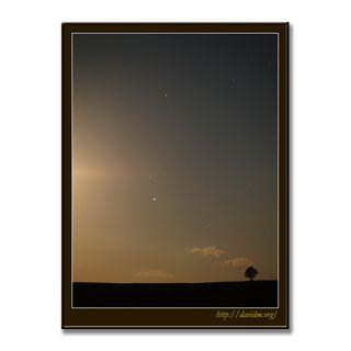 月夜の牧草地