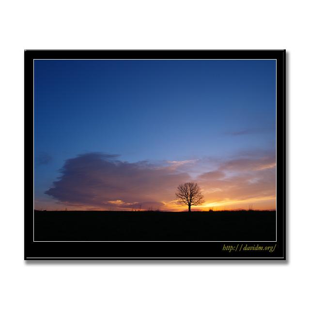 札内高原の朝
