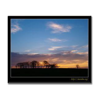 牧草地の朝