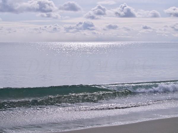 寄せる波の写真
