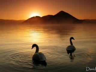 朝を迎えた洞爺湖
