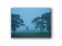 霧の弟子屈