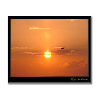 イタンキの朝陽とカモメ