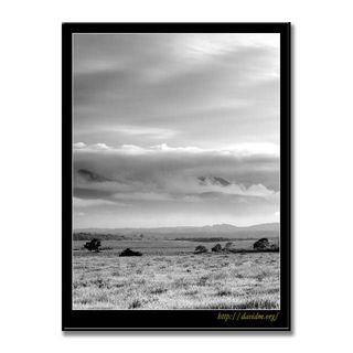 札内高原の牧草地 B&W