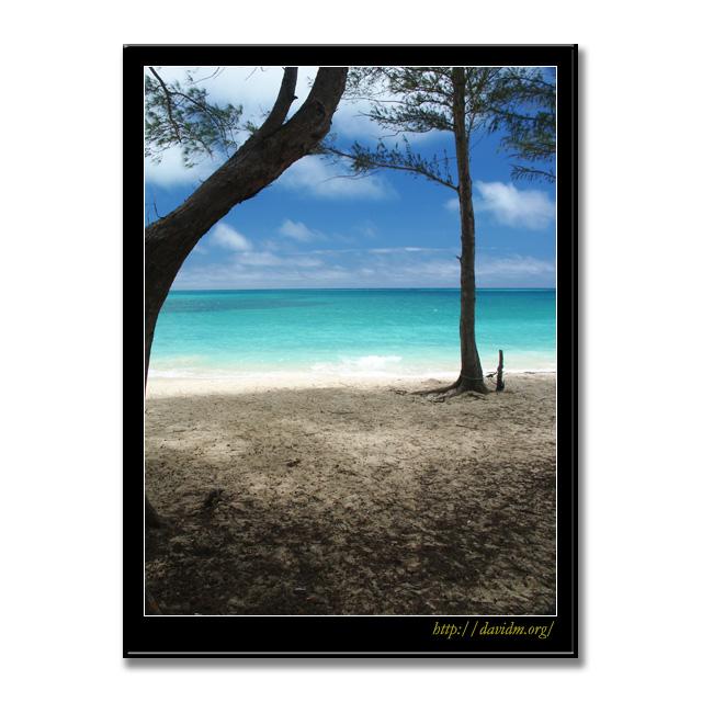 ハワイ ビーチの風景