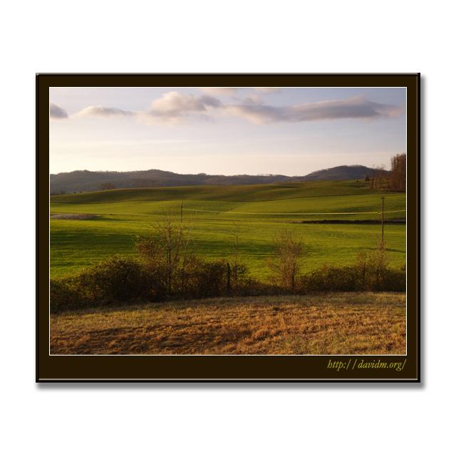 アメリカ合衆国テネシー州のなだらかな丘