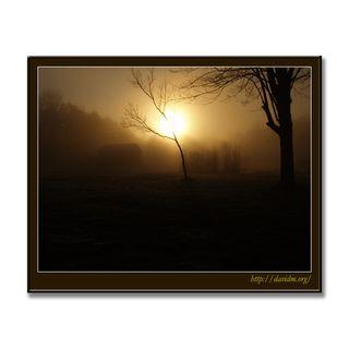 アメリカ合衆国ケンタッキー州 朝靄