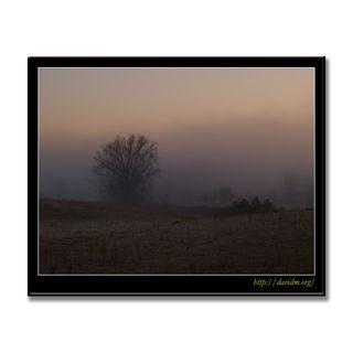 ケンタッキー州 荒地の朝