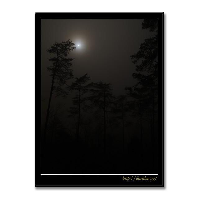 ケンタッキー州 霧の月夜