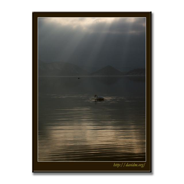 光のカーテンと洞爺湖と白鳥