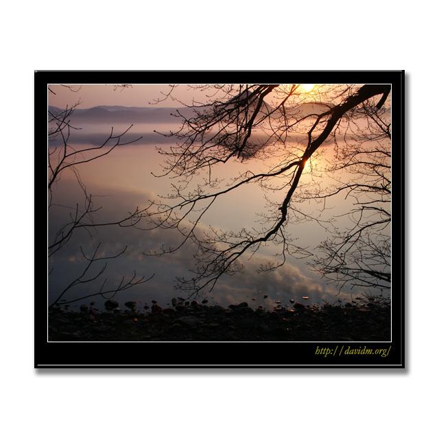 木陰から覗く洞爺湖