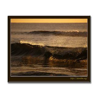 朝の光に透けるイタンキの波