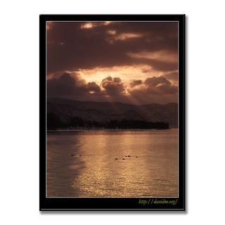 カモと洞爺湖に差し込む朝陽