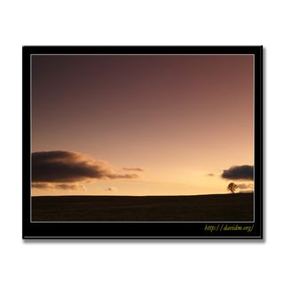 夕暮れの札内高原