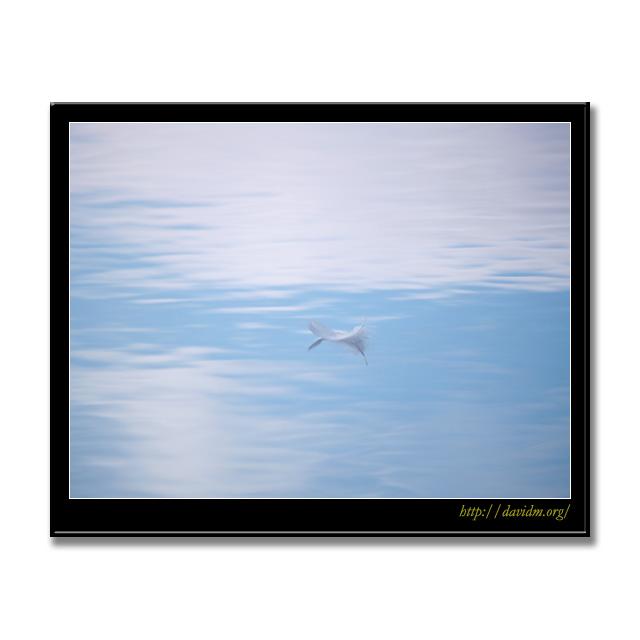 雲間に浮く一枚の羽根