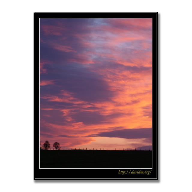 牧草地の空を染める朝陽