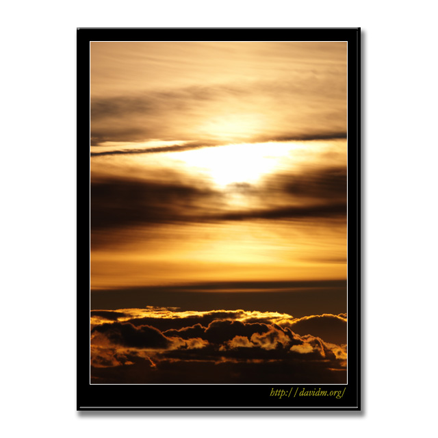 黄金色に染まる朝の雲