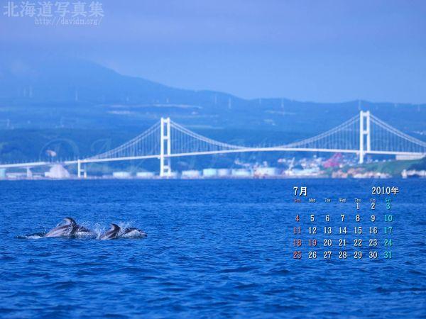7月の壁紙カレンダー:カマイルカと白鳥大橋