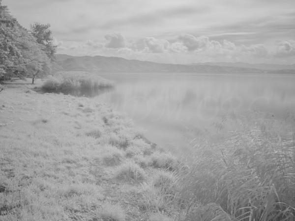 洞爺湖畔の赤外線写真