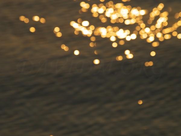 波に浮かぶ太陽の光