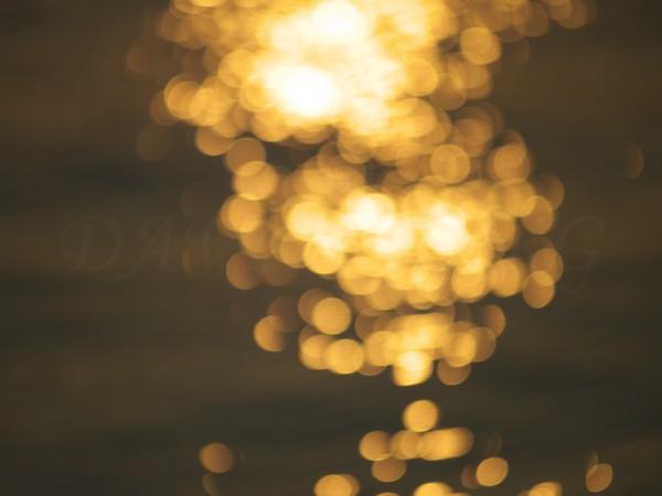 波と光のサンプル