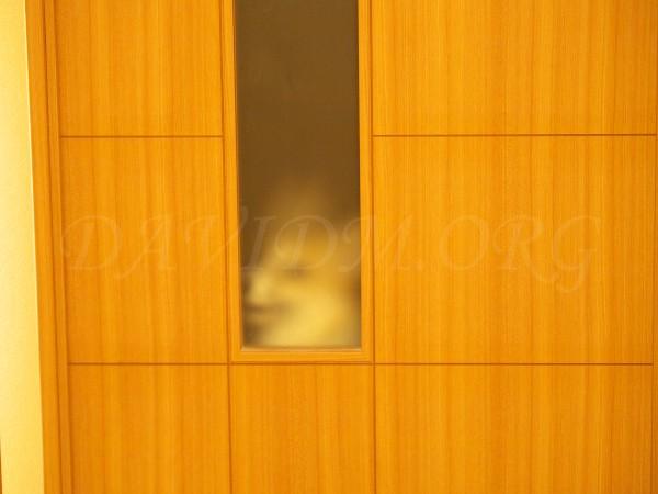 ドア越しのコーギー