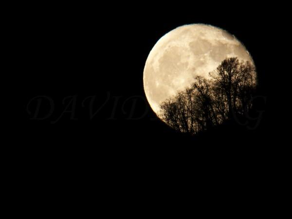 山陰から顔を出す月