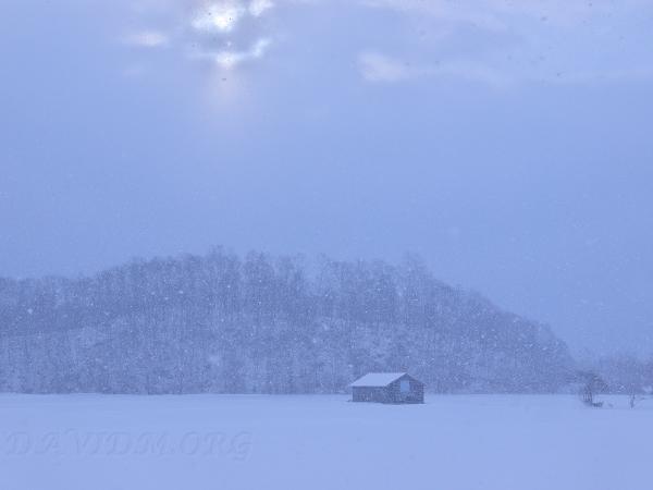 雪原の小屋と大雪