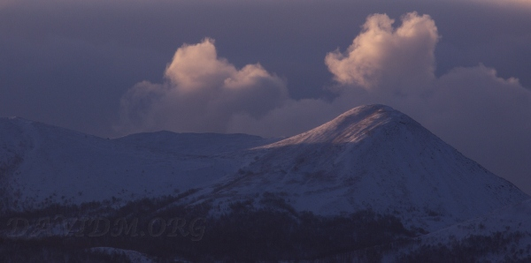 朝の有珠山の写真