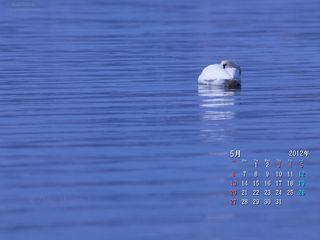 5月の壁紙カレンダー: 湖面でまどろむ朝
