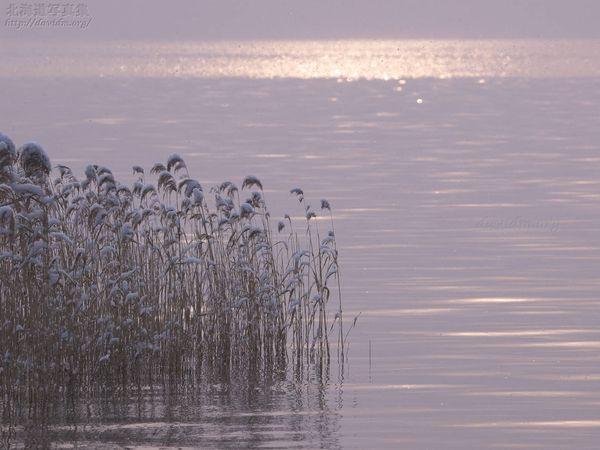 今月の壁紙: 冬の洞爺湖畔