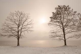 今月の壁紙: 洞爺湖の朝