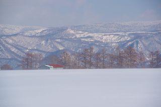 今月の壁紙: 雪景色の豆畑