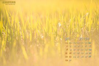 9月の壁紙カレンダー: 洞爺湖畔の財田米
