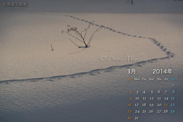 3月の壁紙カレンダー: 雪原の足跡
